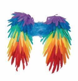 wingsrainbowfeather_74475.jpg