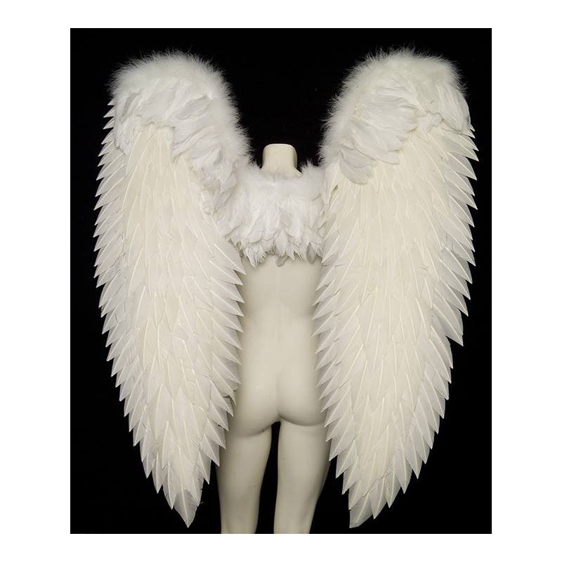 Wings, XL Angel
