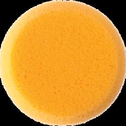 Hydra Sponge Medium medium